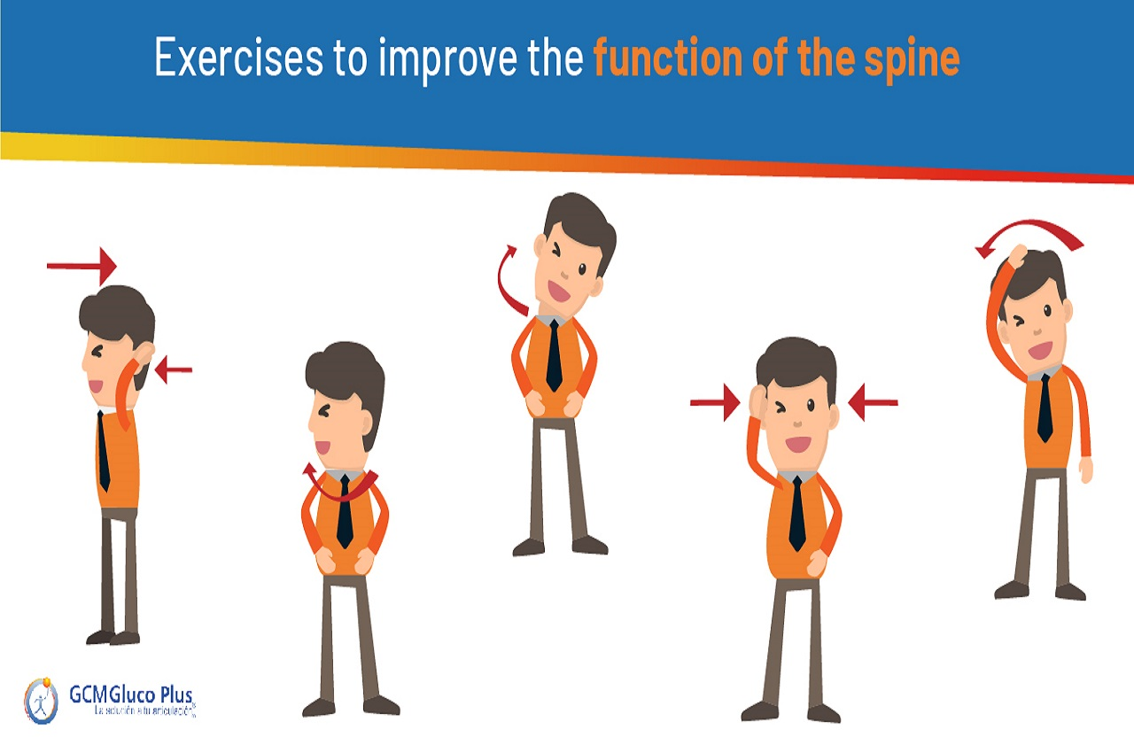 Exercises to improve spinal function